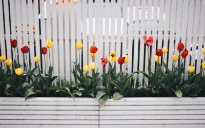 Få shinet haven op til sommer med havehegn og havelåger