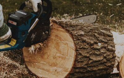 Fæld en skov med motorsave og kædesave
